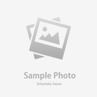 ヘルマンリクガメ ♂